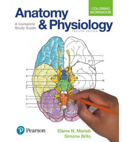 Tải sách: Anatomy & Physiology
