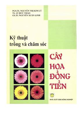 Tải sách: Kỹ thuật trồng và chăm sóc cây hoa đồng tiền