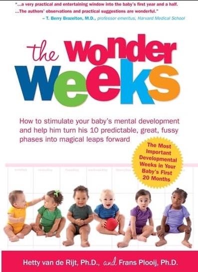 Tải sách: The Wonder Weeks – Tuần Khủng Hoảng